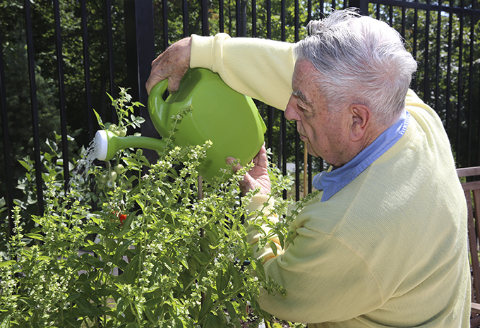 Brightview Wellspring Village Memory Care Resident gardening